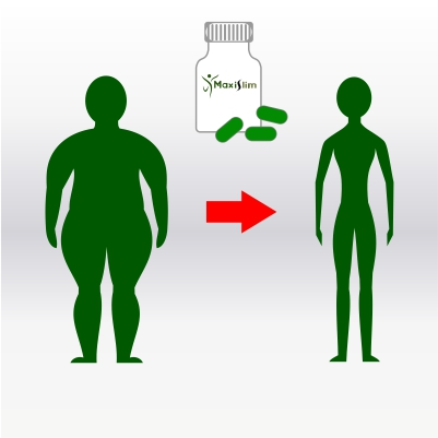 maxislim lemak